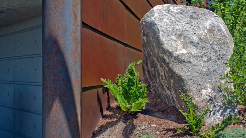 Cornfield 4_rock detail